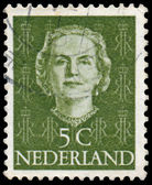 NETHERLANDS - CIRCA 1949: A stamp printed in Netherlands, shows  — Stock Photo