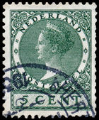 NETHERLANDS - CIRCA 1924: A stamp printed in the Netherlands sho — Stockfoto