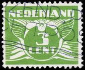 NETHERLANDS - CIRCA 1926: A stamp printed in Netherlands, shows  — Stockfoto