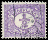 NETHERLANDS - CIRCA 1899: A stamp printed in the Netherlands, sh — Stock Photo