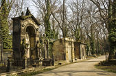 Prague - Cemetery — Stock Photo
