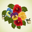 Royalty-Free Stock Vector Image: Bunch of pansies