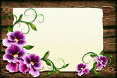 Pansies on a wooden background — Stock Photo
