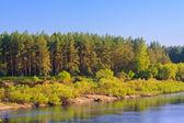 Calm River — Stock Photo