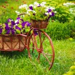 Stock Photo: Decorative Bicycle In Garden