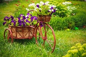 Decorative Bicycle In Garden — Stok fotoğraf