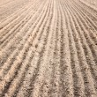 Furrows in a field after plowing it. — Stock Photo