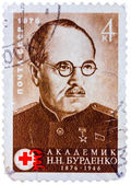 Stamp printed by Soviet Union (USSR), shows portrait of Nikolai — Stock Photo