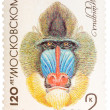 Stock Photo: Postal stamp printed in USSR shows a Mandrill, series 120 annive