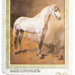 Stamp printed in USSR, shows Letuchya, Gray Orlov Trotter Stal — Stock Photo #39204045