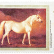 "Stamp printed in USSR shows painting ""Light Gray Arabian Stallio — Stock Photo"