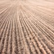 Furrows In Field After Plowing It — Stock Photo #39224733