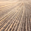 Furrows In Field After Plowing It — Stock Photo #39224905