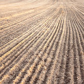 Furrows In A Field After Plowing It — Stock Photo