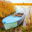 River and blue rowing boat — Stock Photo