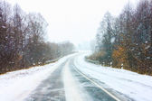 Snowy Land Road — Photo