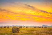 Campo do nascer do sol, fardos de feno na bielorrússia. — Fotografia Stock