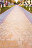 Walk Way Surface — Stock Photo