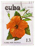 Postage Stamp Shows Flowers of the Pacific Ocean — 图库照片