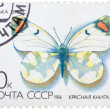 Stamp from the USSR (Scott 2008 catalog number 5437) shows image — Stock Photo #41872135