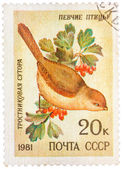 Stamp printed by Russia, shows bird, Reed Parrotbill — Stockfoto
