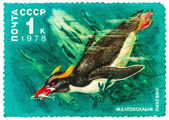 Stamp printed by Russia, shows Crested penguin — Stockfoto