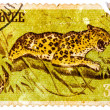 "Stamp printed in Guinea from the ""Wild Animals"" issue shows a Le — Stock Photo #41944257"