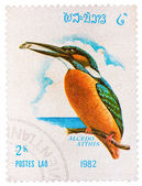 Stamp printed in LAOS shows Common Kingfisher (Alcedo atthis), f — Stock Photo