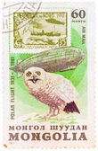 Stamp printed in MONGOLIA shows image of a snowy owl, from the s — Stock Photo