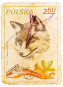 Stamp printed in Poland shows image of a fox and shotgun — Stockfoto