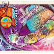 Stamp printed in The Soviet Union devoted to the international p — Stock Photo #42010687