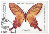 Stamp printed in the USSR shows butterfly — Foto Stock