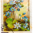 Stamp printed in USSR (CCCP, soviet union) shows anemone hepatic — Stock Photo