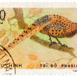 Stock Photo: Stamp printed in Vietnam shows Phasianus colchicus or common phe