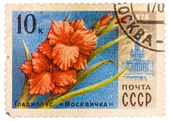 Stamp printed in USSR (CCCP, soviet union) shows image of gladio — Stock Photo