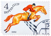 Stamp printed in USSR shows a Donskaya horse, series horse breed — Stockfoto