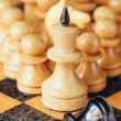 Chess leader — Stock Photo #44615287