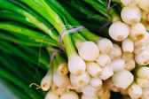Fresh organic young raw green onion for selling at vegetable mar — Stock Photo