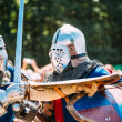 Постер, плакат: Knights in a fight with swords