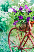 Decorative Bicycle In Garden  — Stock Photo