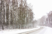 Snowy Land Road — Stock Photo