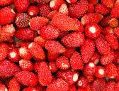 Strawberry. Strawberries. Organic Berries Background — Stock Photo