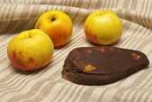 Traditional lithuanian apple cheese — Stock Photo