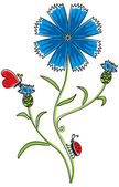 Knapweed flower — Stock Vector