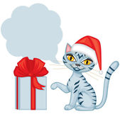 Tabby cat wishes Merry Christmas — Stock Vector