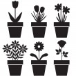 Pot plants set — Stock Vector
