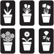 Icon of pot plants set - Stok Vektör