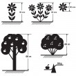 Flowers and trees size scheme — Stock Vector