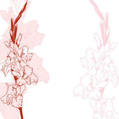 Gladiolus flowers background — Stock Vector
