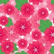 Lavater flowers seamless pattern — Stock Vector
